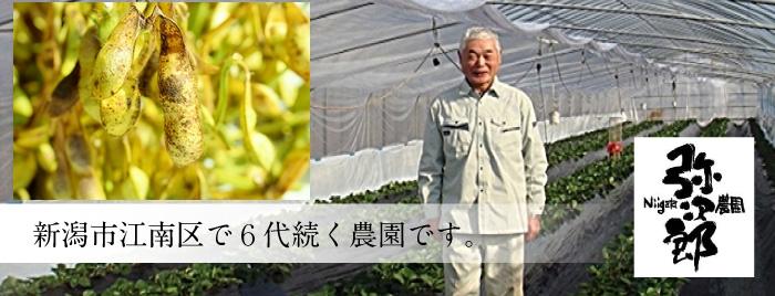 黒豆の生産