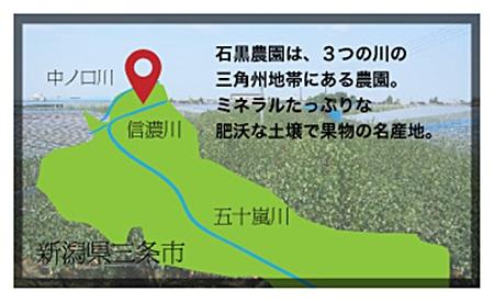 新潟県三条産